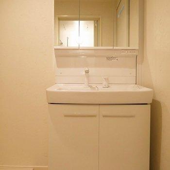 洗面台も収納力抜群です。