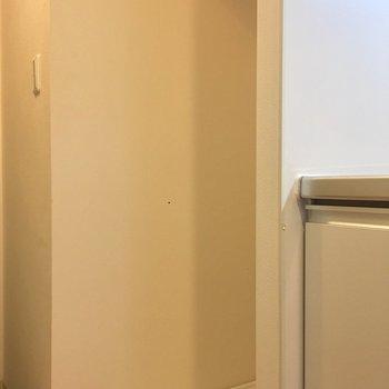 その横に洗濯機。棚があるので洗剤を置くことができます。