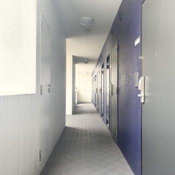 共用廊下はブルーが効いています。