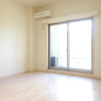 ペット可の1Kマンションです。(※写真は6階の同間取り別部屋のものです)