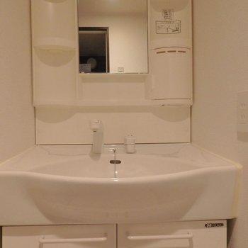 洗面台はよくある感じ。