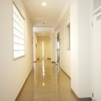 共用廊下はほどよく明るくてきれい!