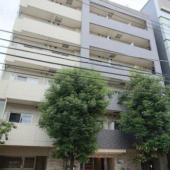 プレール・ドゥーク北新宿