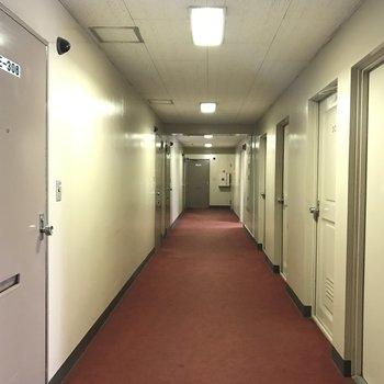 廊下もなんだか懐かしい