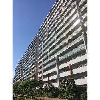 川崎サイトシティⅢ番館