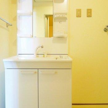 洗面台はまだまだ綺麗。※写真は前回掲載時のものです。