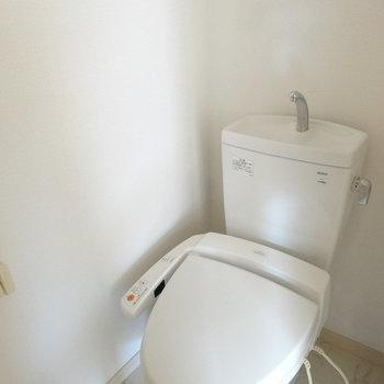 トイレは1階。ブラウンのドアでした。