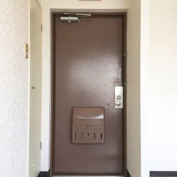 濃いブラウンの玄関扉。渋くてかっこいい。
