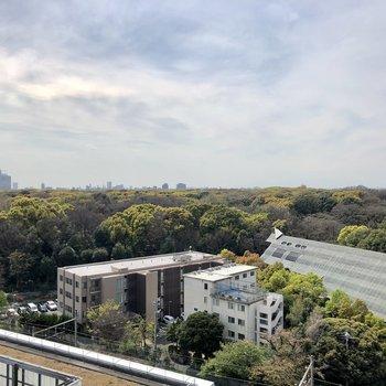ベランダからは明治神宮御苑・代々木公園の緑が広がります。
