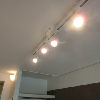 スポットライトの明かり ※写真は別部屋です