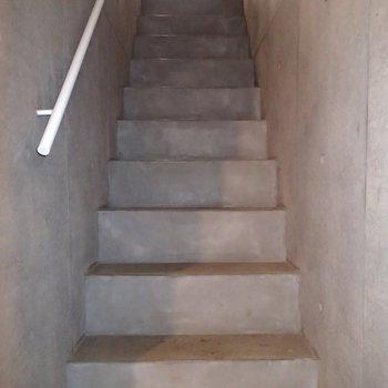階段コンクリそのままでかっこいい。いい感じの光が降りてきます