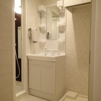 水回りはこんな感じ、脱衣所に洗濯機があるので便利!