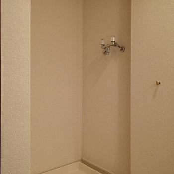 洗面台の裏に扉付きの洗濯機置場があります