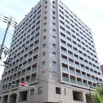 ドーン。14階建て。303世帯マンション