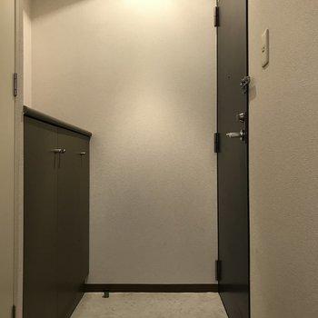 玄関も狭くはないですね