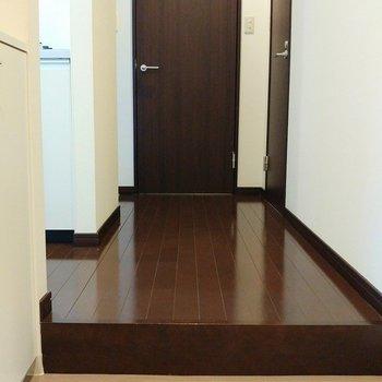 こちらは玄関。左手にキッチン、奥の扉は洗面所