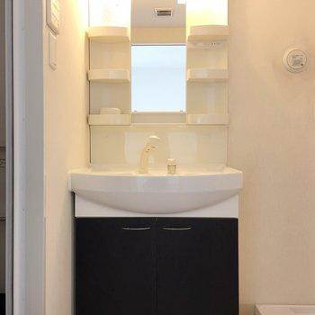 洗面台の棚は3段も。
