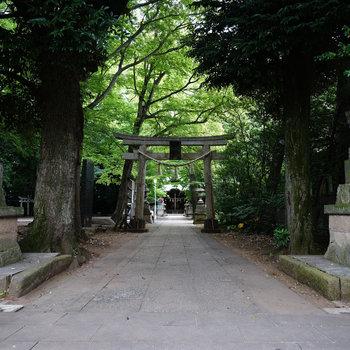 近くには小金井神社がありますよ♪