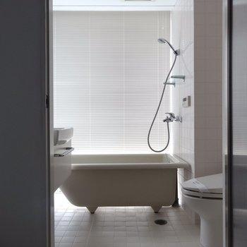 なんだか海外風のシャワールーム※写真は4階の同間取り別部屋のものです