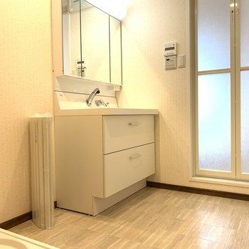 ゆったりスペースの脱衣所には大きな鏡のシャンプードレッサーと洗濯機置き場がありました。
