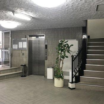 階段が可愛い※前回募集時の写真です。