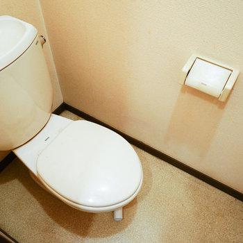 トイレはこちらを綺麗に※写真は工事前です