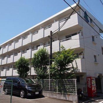 TOP武蔵新田NO1