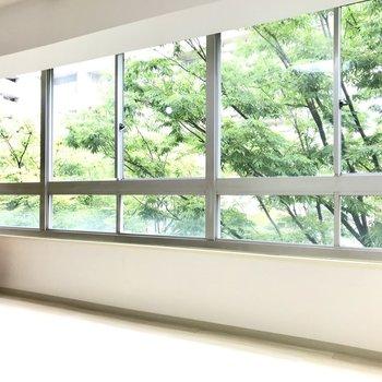 窓は南向き。晴れた日は木漏れ日が入りそう♩(※写真の家具小物は見本です)