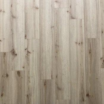 この木目調の床がお気に入り◯