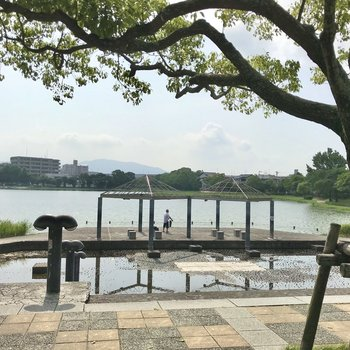 そして近くには諸岡池。大きな池のまわりをランニングすると気持ちいいですよ!
