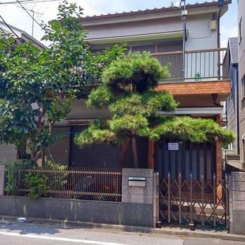 松と柿の貫禄のある外観