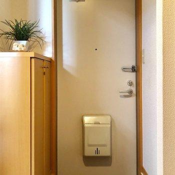 シンプルな玄関!(※写真の置物は見本です)