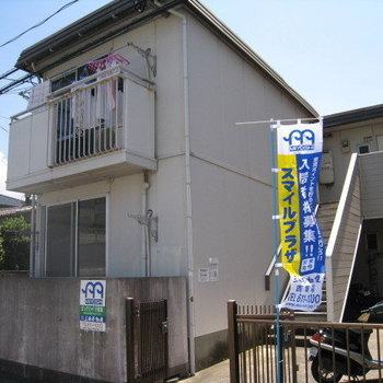 ピュアハイツ筥松