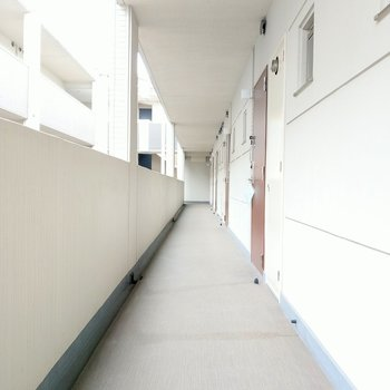 共用廊下も広くてとってもキレイ!