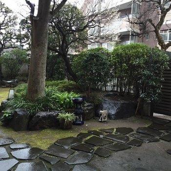 庭がいい!!!