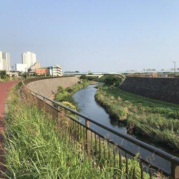 多摩川沿いを散歩