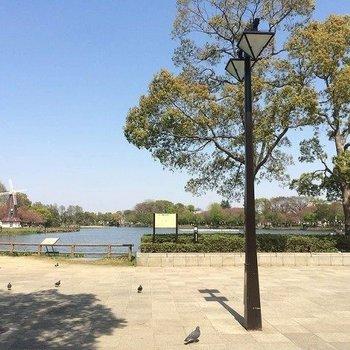 近くの大きな公園