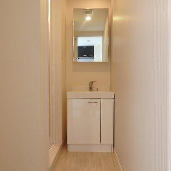脱衣所は奥行きがあるタイプ。洗濯機置き場もこの空間に