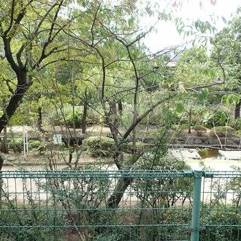 眺望は大横川親水公園!