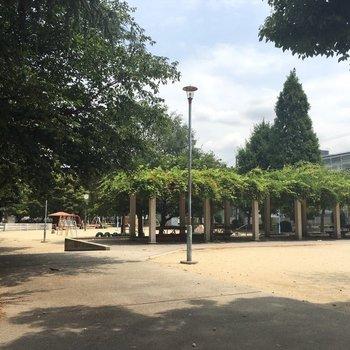 関目の雰囲気はこんな感じ。近くの公園。のどかなところ。