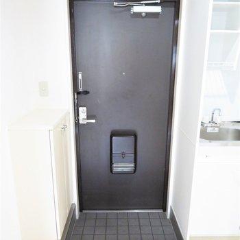 玄関は小さいです(※写真は5階の反転似た間取り別部屋のものです)