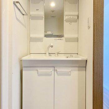 ノズルが伸びるから洗いやすい。(※写真は10階の反転間取り別部屋、清掃前のものです)