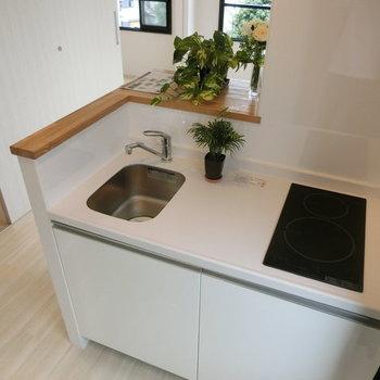 キッチン。観葉植物がよく映えます。※写真は別部屋です