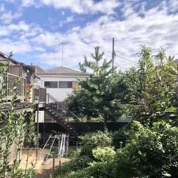 眺望はお隣さんの庭です