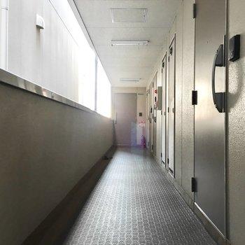 共用部】廊下は暗い印象。