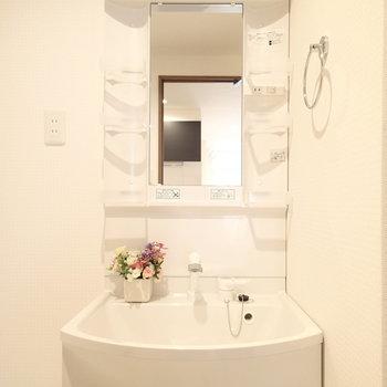 洗面台はシンプルな普通のやつ