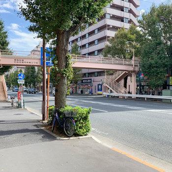 青梅街道を歩いて駅へ。道中にはスーパーやコインランドリーなども。
