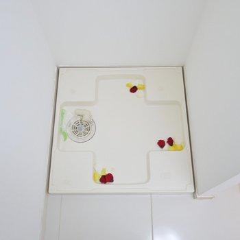 洗濯機置き場も脱衣所に(※写真は10階の同間取り別部屋のものです)