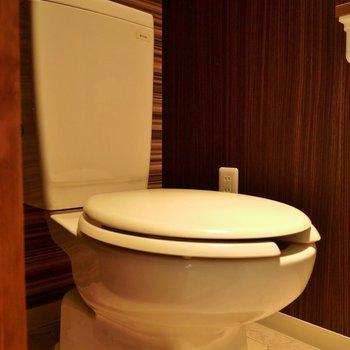 スポットライトが浴びれるトイレはちょっぴり古め!