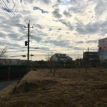 眺望はとっても開けています!目の前は柿の木畑でした。※写真は前回募集時のものです。